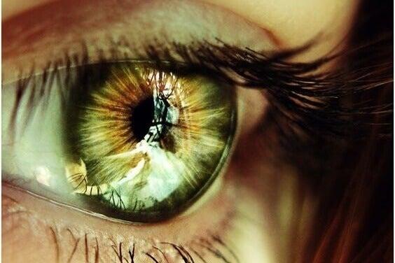 Presentimenti riflessi negli occhi
