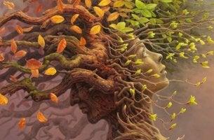 Riserva cognitiva rappresentata da alberi con rami