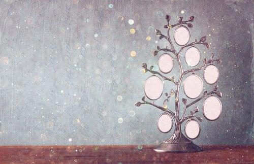 Albero genealogico: uno strumento di crescita e cura