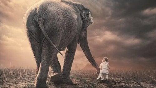 Elefante e bambina