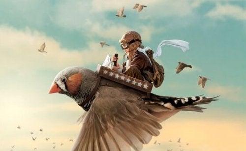 Bambino che vola sopra un uccello
