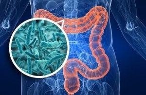 Batteri intestinali ed emozioni