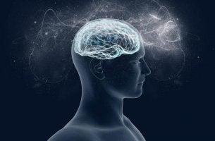 Il magnesio e i suoi effetti sul cervello