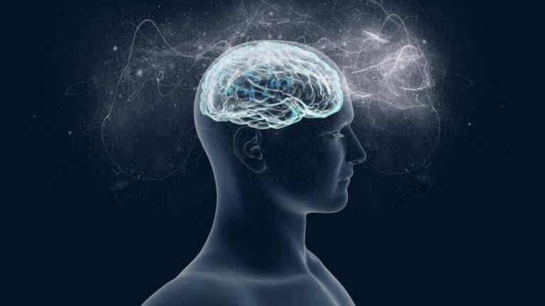 Il magnesio: alleato del cervello e del benessere psicologico