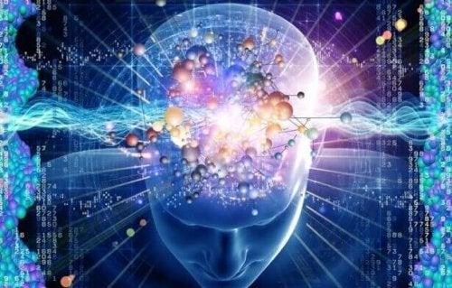 Neurofeedback e cervello