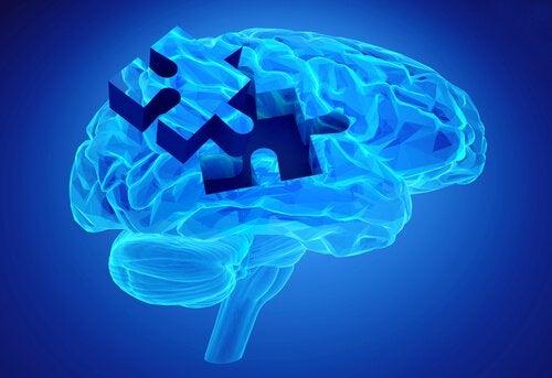 Pezzo di puzzle nel cervello