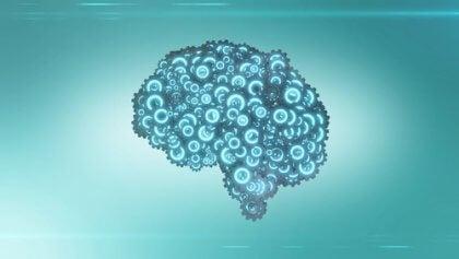 Mancino o destrimano secondo il cervello