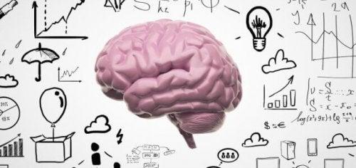 Cervello e nuovi ricordi