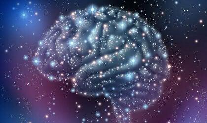 Cervello e stelle