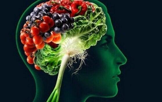 Alimenti per aumentare la memoria