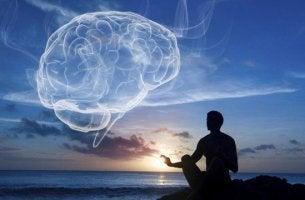 Cervello spirituale Wellness