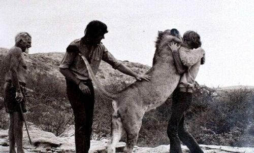 L'addio di Christian il leone e i suoi amici umani
