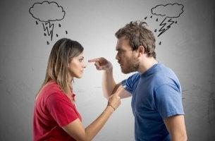 Coppia che fa uso di aggressioni verbali