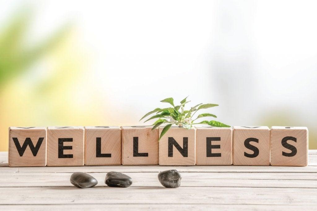 Cubi che formano la parola wellness
