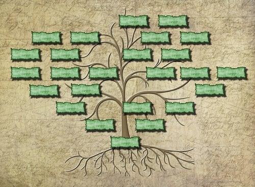 Disegno albero genealogico