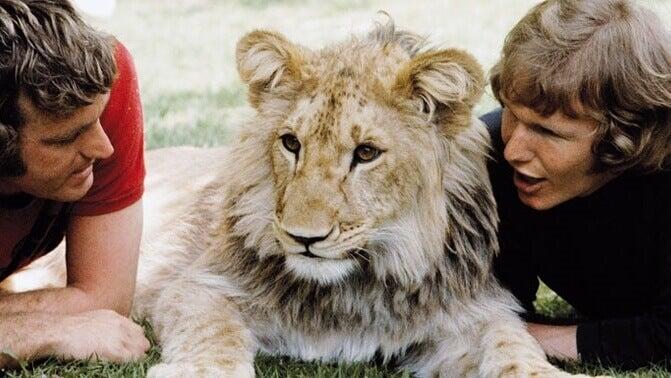 La commovente storia di Christian il leone