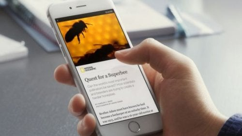 Notizia virale su uno Smartphone