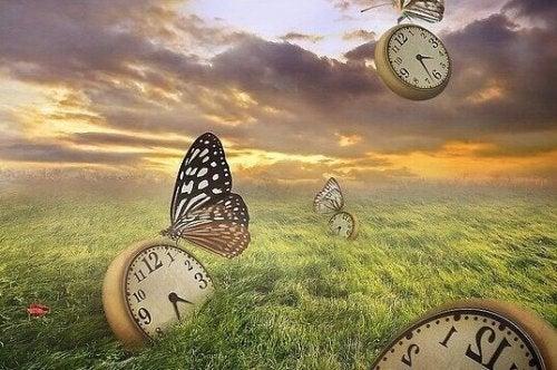 Orologi in un prato con farfalle