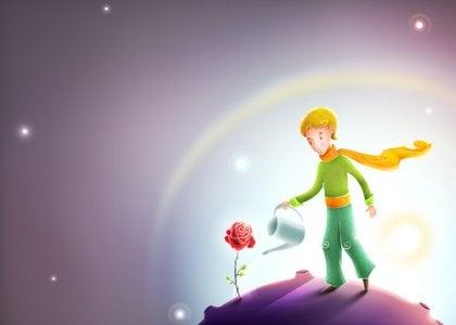 Piccolo principe che annaffia la rosa