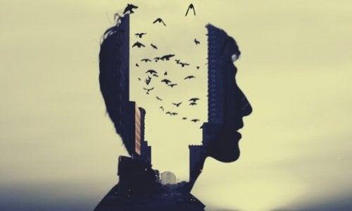 Profilo di uomo e uccelli