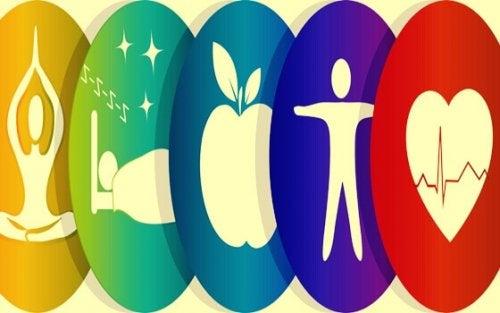 Sfere che rappresentano il benessere integrale