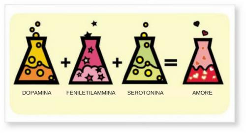 Le sostanze chimiche dell'amore