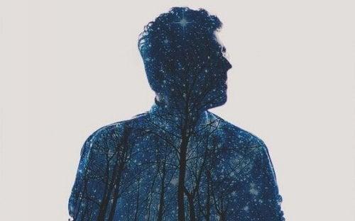 Sagoma di uomo con stelle e alberi