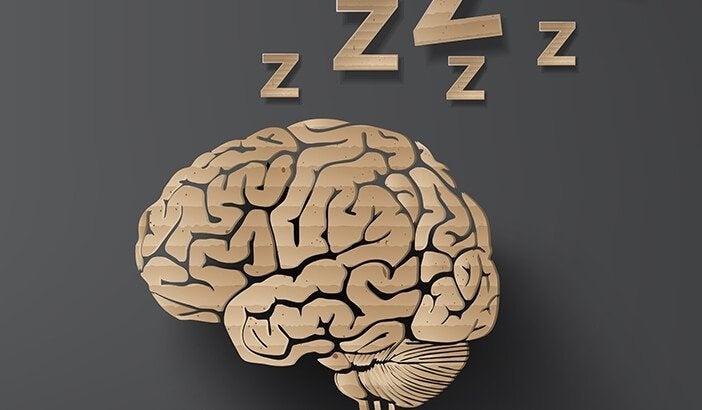 Cervello che sogna