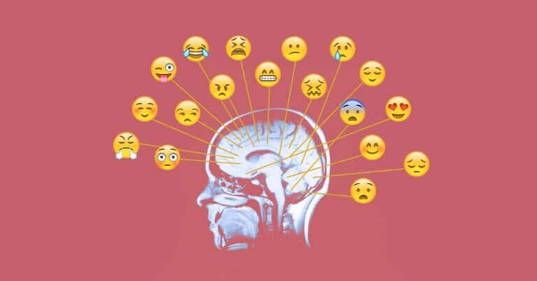 Emozioni nel cervello