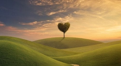 Albero a forma di cuore che rappresenta la scelta di cosa fare con la nostra vita