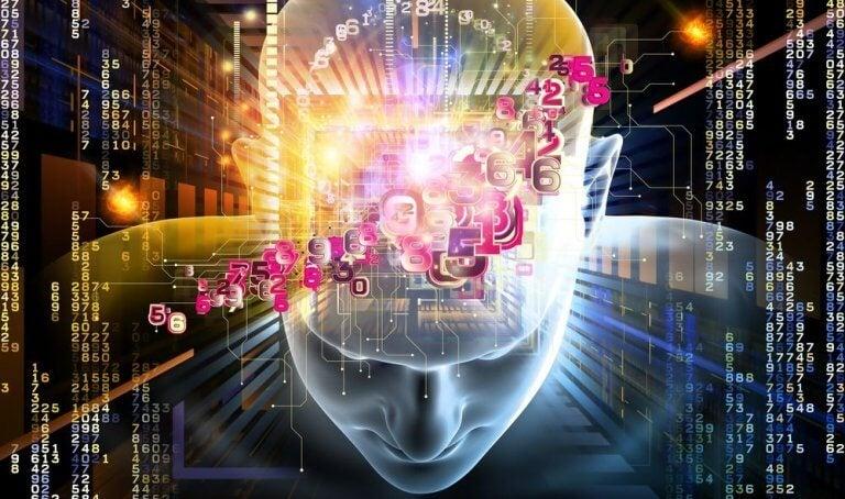 Cervello con numeri
