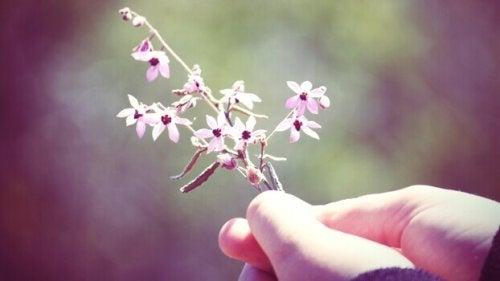 Mano che tiene dei fiori
