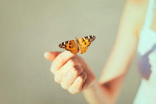 Mano con farfalla gialla