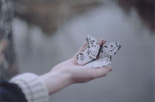 Mano con farfalle