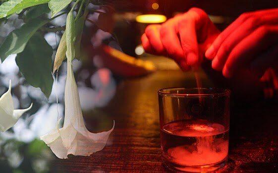 Persona che aggiunge scopolamina a una bevanda