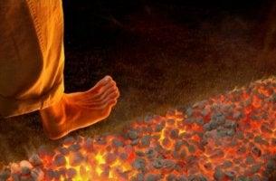 Il firewalking piede sui carboni ardenti
