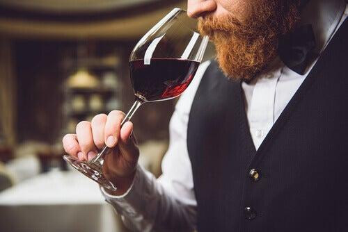 Sommelier che annusa il vino