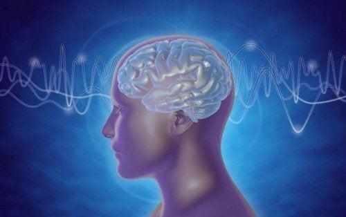 Le onde cerebrali di una persona