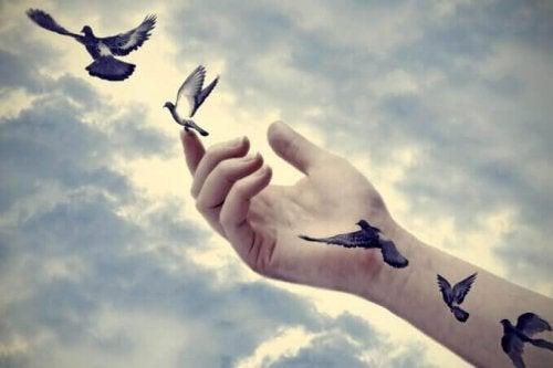 Mano che libera degli uccelli che si alzano in volo