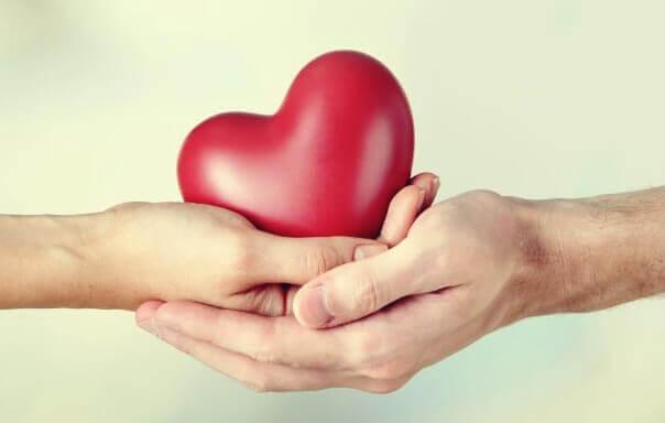 Cuore fra le mani donatori e riceventi
