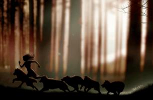 Frasi del libro Donne che corrono coi lupi