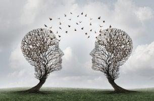 Due alberi a forma di testa cognizione sociale