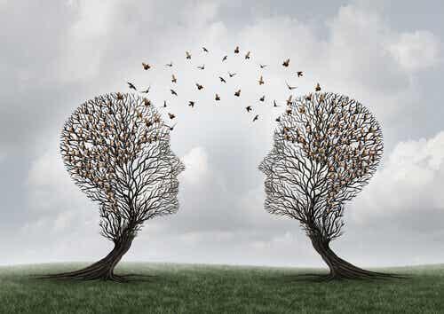 Cognizione sociale: cos'è?