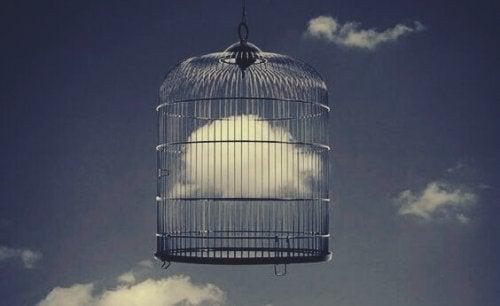 Nube in una gabbia