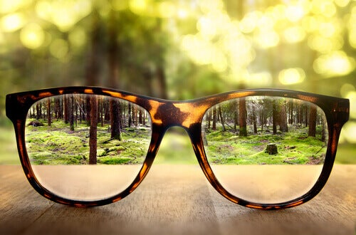 Occhiali con bosco sullo sfondo