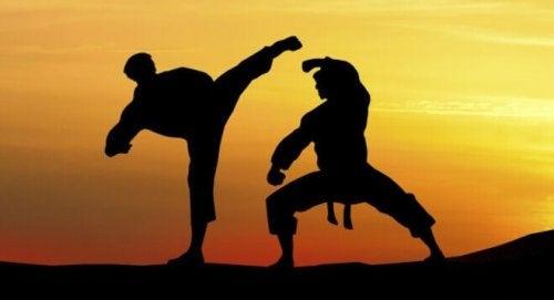 Sagome che praticano arti marziali