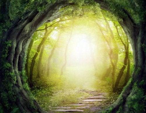 Sentiero come simbolo del percorso verso l'autorealizzazione