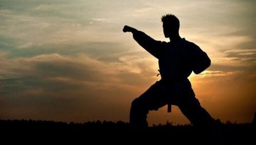 Uomo che pratica arti marziali
