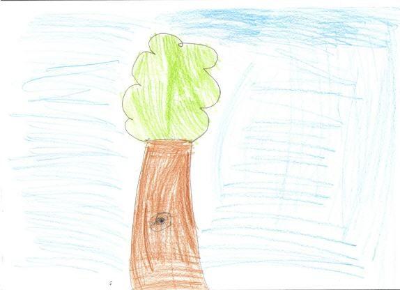 Disegno di una albero fatto da un bambino