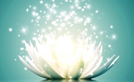 Fiore che rilascia energia